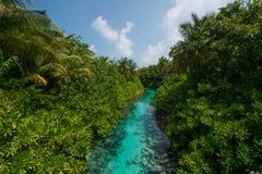 从桥梁的热带河视图在马尔代夫 库存图片