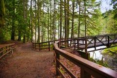 桥梁的看法在英国人河的在温哥华Isla下跌 免版税库存图片