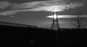 桥梁的黑白图片在森林的 库存照片