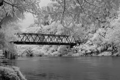 桥梁红外线 免版税库存照片