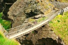 桥梁绳索 免版税图库摄影