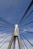 桥梁缆绳 库存照片