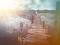 桥梁老建筑学 Kae水坝区,玛哈Sarakham,泰国 免版税库存图片