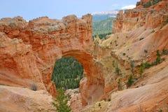 桥梁自然bryce的峡谷 库存照片