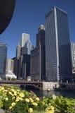 桥梁芝加哥il指明街道 库存图片
