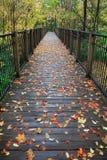 桥梁英尺 免版税图库摄影