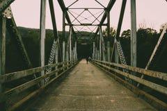 桥梁视图 免版税库存图片