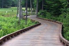 桥梁路线弯曲的高尔夫球 库存图片