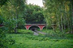 桥梁通过一个山沟在附近城市公园和桦树 库存照片