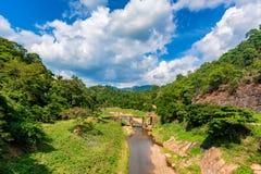 桥梁风景在河的在密林 免版税库存图片