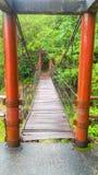 桥梁,停止,背景,木,热带,森林,绿色,红色,夏天,树,旅行,风景,室外 免版税图库摄影