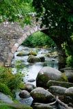 桥梁cornwall dartmoor 免版税图库摄影