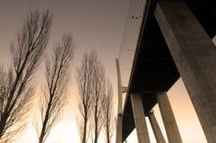 桥梁da gama瓦斯考 免版税库存图片