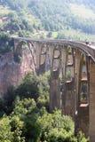 桥梁djurdjevica塔拉 库存照片