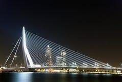 桥梁erasmus鹿特丹 免版税库存图片