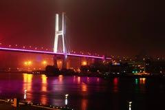 桥梁nanpu晚上上海暂挂 免版税库存照片