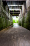 桥梁tunel 免版税库存照片