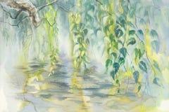 桦树分支在春天水彩背景中 库存图片