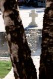 桦树和十字架 免版税库存照片