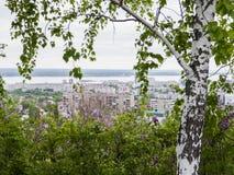 桦树和开花的丁香在前景 在市的背景视图萨拉托夫和伏尔加河,俄罗斯 免版税库存图片