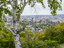 桦树和开花的丁香在前景 在市的背景视图萨拉托夫,俄罗斯 库存照片