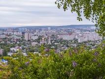 桦树和开花的丁香在前景 在市的背景视图萨拉托夫,俄罗斯 免版税库存图片