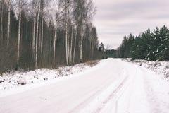 桦树在冬天下雪-葡萄酒减速火箭的作用 免版税库存图片