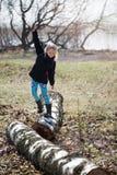 桦树平衡 免版税库存图片