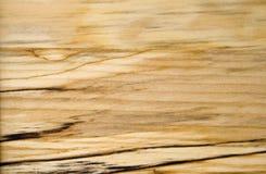 桦树接近的黑暗的谷物斑纹木头 免版税库存照片