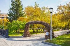 桦树曲拱在新西伯利亚状态acad的公园分支 库存图片