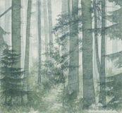 桦树木头 库存例证