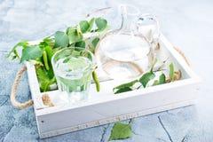 桦树汁液 库存图片