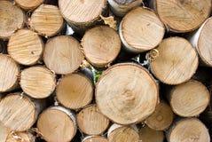 桦树火木头 免版税图库摄影