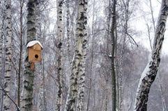 桦树的鸟的房子在水平的冬天 库存图片