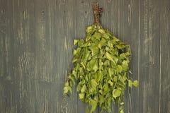 桦树笤帚 免版税图库摄影