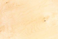 桦树胶合板 免版税图库摄影