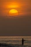 桨冲浪 免版税库存图片