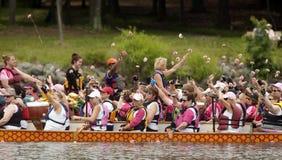 桨粉红色 免版税库存图片
