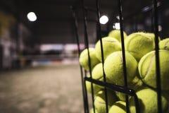桨网球篮子 库存图片