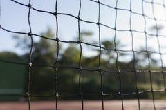 桨网球 库存照片