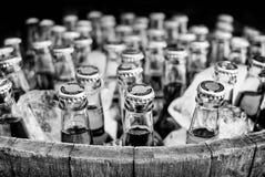 桶在冰的工艺啤酒在黑白普通瓶 免版税库存照片