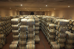 桶在Guado Al塔索,意大利葡萄酒库里  库存图片