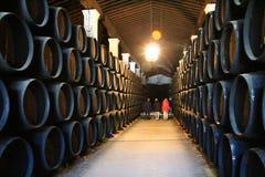 桶地窖在冈萨雷斯Byass酿酒厂 免版税图库摄影