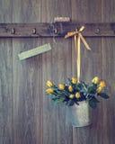 桶玫瑰 免版税图库摄影