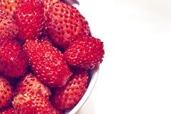 桶用在白色背景的红色野草莓 图库摄影