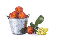 桶用杨梅在白色的unedo果子 免版税库存图片