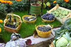桶用葡萄和其他菜和花在背景中 免版税库存照片