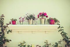 桶花和花盆 免版税库存照片