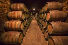 桶行在Rioja酿酒厂 免版税库存照片