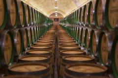 桶行在Rioja酿酒厂 图库摄影